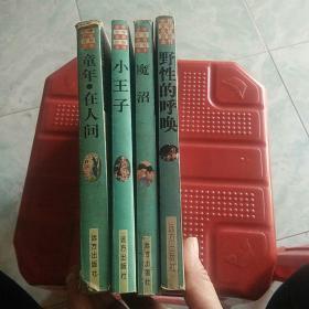 世界文学名著百部全书:小王子、野性的呼唤、魔沼、童年在人间