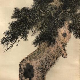 日本近代花鸟大家上田万秋翠松锦雉图  绢本绫裱,斑竹轴头,画心129*28,画家自题原木箱。日本有专力收集其画作者,此画个人风格明显,在日本画中亦属特出,细长挂轴少见