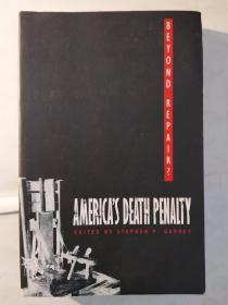 Beyond Repair?: America's Death Penalty (Constitutional Conflicts)