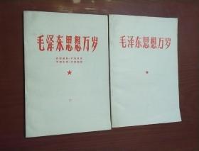 毛泽东思想万岁(上下)