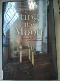 Biting the Moon: A Memoir of Feminism and Motherhood