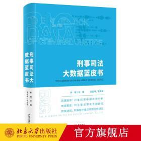 【原版新书闪电发货】2020新版 刑事司法大数据蓝皮书 林维 著 北京大学出版社