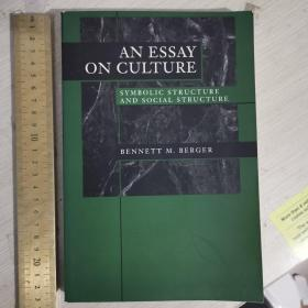 An essay on culture man symbolic structure and social structure 象征结构和社会结构 英文原版