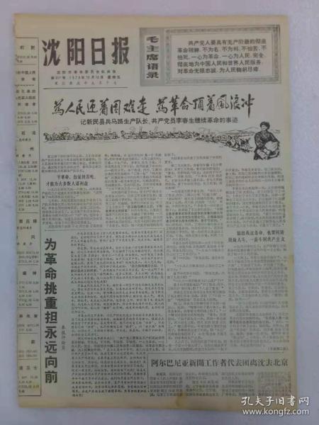 (沈阳日报)第917号