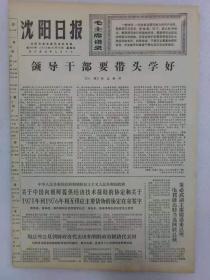 (沈阳日报)第919号