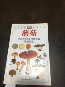 蘑菇 全世界500多种蘑菇的彩色图鉴