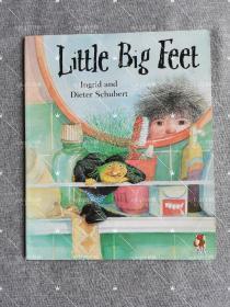 【品相不佳】平装大开本The Little Big Feet