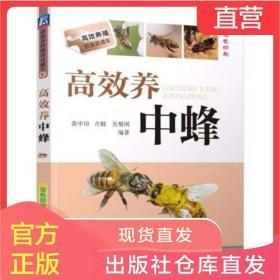 养中蜂 中蜂蜜蜂养殖技术书 养蜂实用手册书 蜜蜂养殖技术书籍