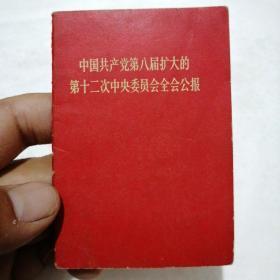 中国共产党第八届扩大的第十二次中央委员会全会公报