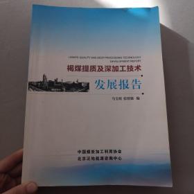 褐煤提质及深加工技术发展报告
