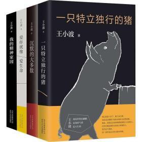 王小波雜文套裝(共4冊)