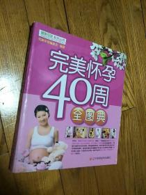 完美怀孕40周全图典