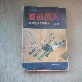 鏖战蓝天:世界空战王牌列传