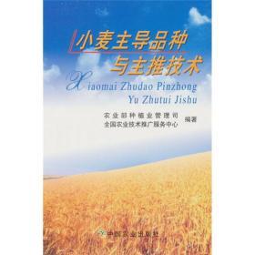 粮食种植技术书籍 小麦主导品种与主推技术