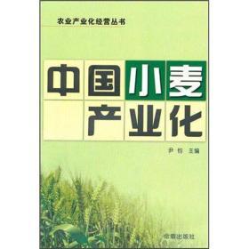 粮食种植技术书籍 中国小麦产业化