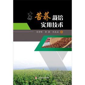 粮食种植技术书籍 苦荞栽培实用技术