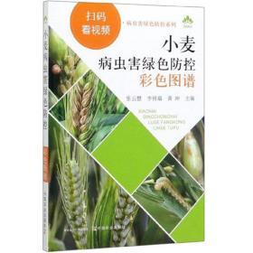 粮食种植技术书籍 小麦病虫害绿色防控彩色图谱