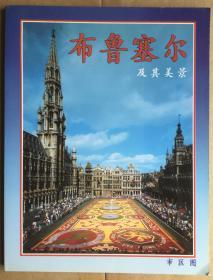 布鲁塞尔  及其美景(旅游画册)