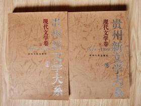 贵州新文学大系:1919~1989.现代文学卷.上下