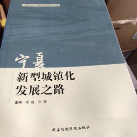 宁夏新型城镇化发展之路