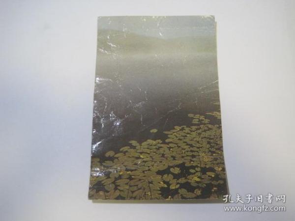 明信片(夏梦)(85779)