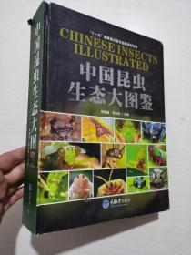 中国昆虫生态大图鉴  正版大16开精装本