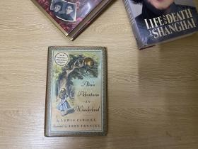 Alice's Adventures in WonderLand   刘易斯·卡罗尔《爱丽丝漫游奇境记》,著名插画家John Tenniel插图,精装