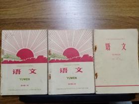 广西壮族自治区中学试用课本 高中语文 (第1—3册 合售)