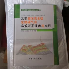 元坝超深高含硫生物礁气田高效开发技术与实践  (3)