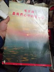 毛主席是我们心中的红太阳(10张内含林彪像)林彪像页有残,其它9品