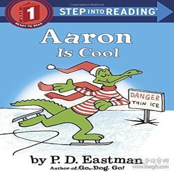 AaronIsCool