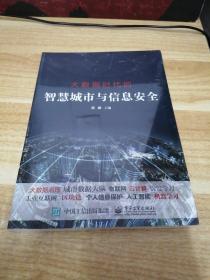 《大数据时代的智慧城市与信息安全》d3