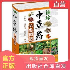 袖珍中草药彩色图谱 解中草药大全 中医书籍 药材分类参考图书籍