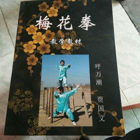 梅花拳教学教材