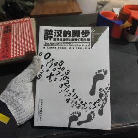 醉汉的脚步:数学圈丛书