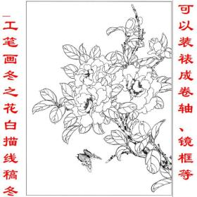 工笔画冬之花白描线稿冬之花茶花 复制品 画芯 可装裱 画框9BBC