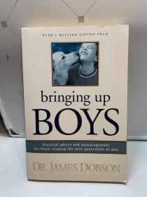Bringing Up Boys