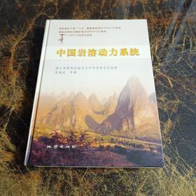 中国岩溶动力系统