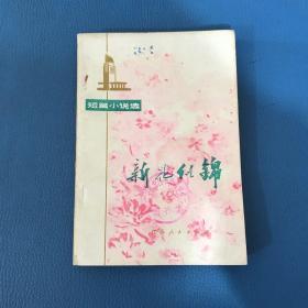 新花似锦短篇小说选