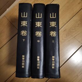 中国乡镇:山东卷(上中下)