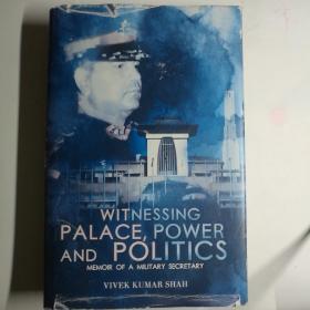 WITNESSING PALACE power and politics【 英文原版 精装品好 】