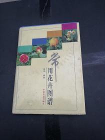 常用花卉图谱