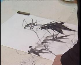 张立辰写意中国画视频教程20讲高清10DVD特学毛笔水墨兰竹技法