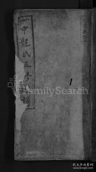 一甲龙氏五修族谱 [14卷首3卷] 复印件