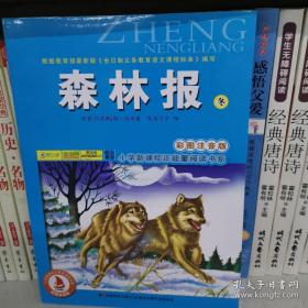 森林报·冬(彩图注音版)