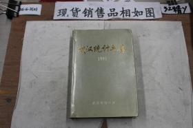 武汉统计年鉴1991 精装