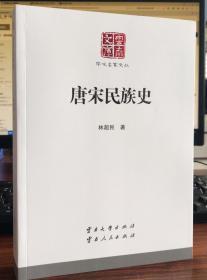 唐宋民族史