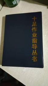 十足作业指导丛书