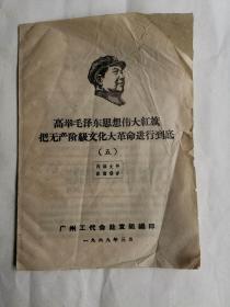 高举毛泽东思想伟大红旗把无产阶级文化大革命进行到底