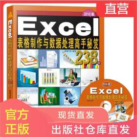 excel书籍 Excel表格制作与数据处理高手秘笈238例 计算机应用基